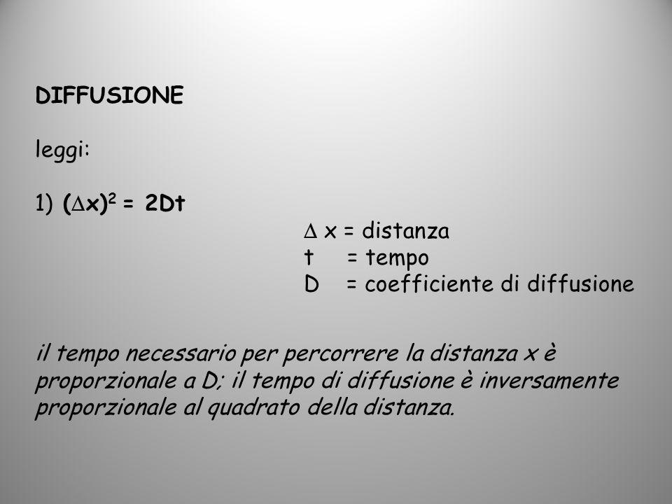 DIFFUSIONE leggi: 1) ( x) 2 = 2Dt x = distanza t = tempo D = coefficiente di diffusione il tempo necessario per percorrere la distanza x è proporziona