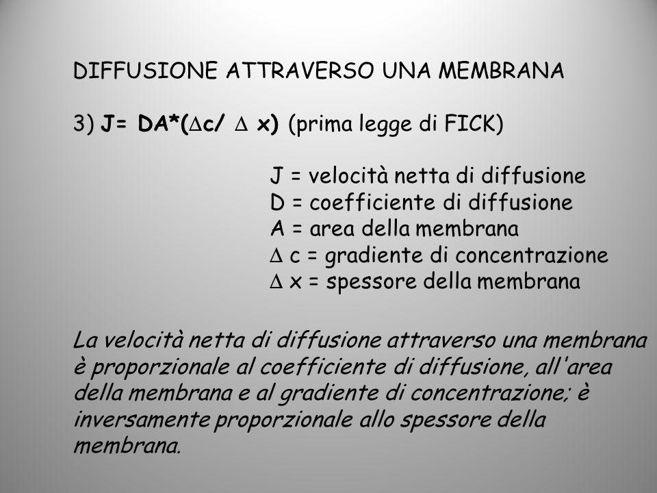 DIFFUSIONE ATTRAVERSO UNA MEMBRANA 3) J= DA*( c/ x) (prima legge di FICK) J = velocità netta di diffusione D = coefficiente di diffusione A = area del