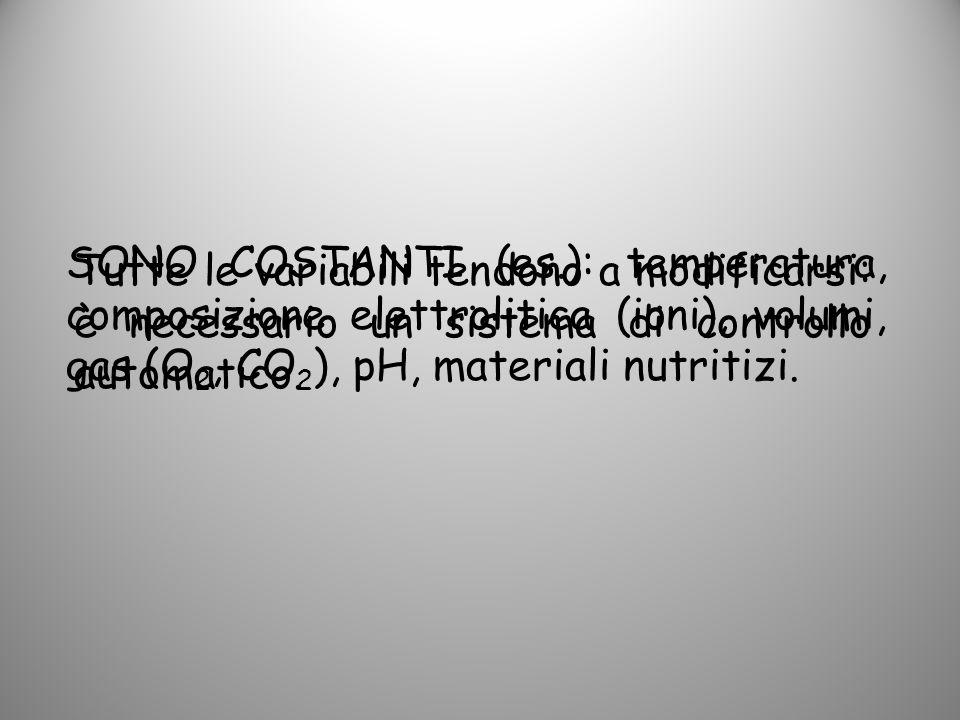 SONO COSTANTI (es.): temperatura, composizione elettrolitica (ioni), volumi, gas (O 2, CO 2 ), pH, materiali nutritizi. Tutte le variabili tendono a m