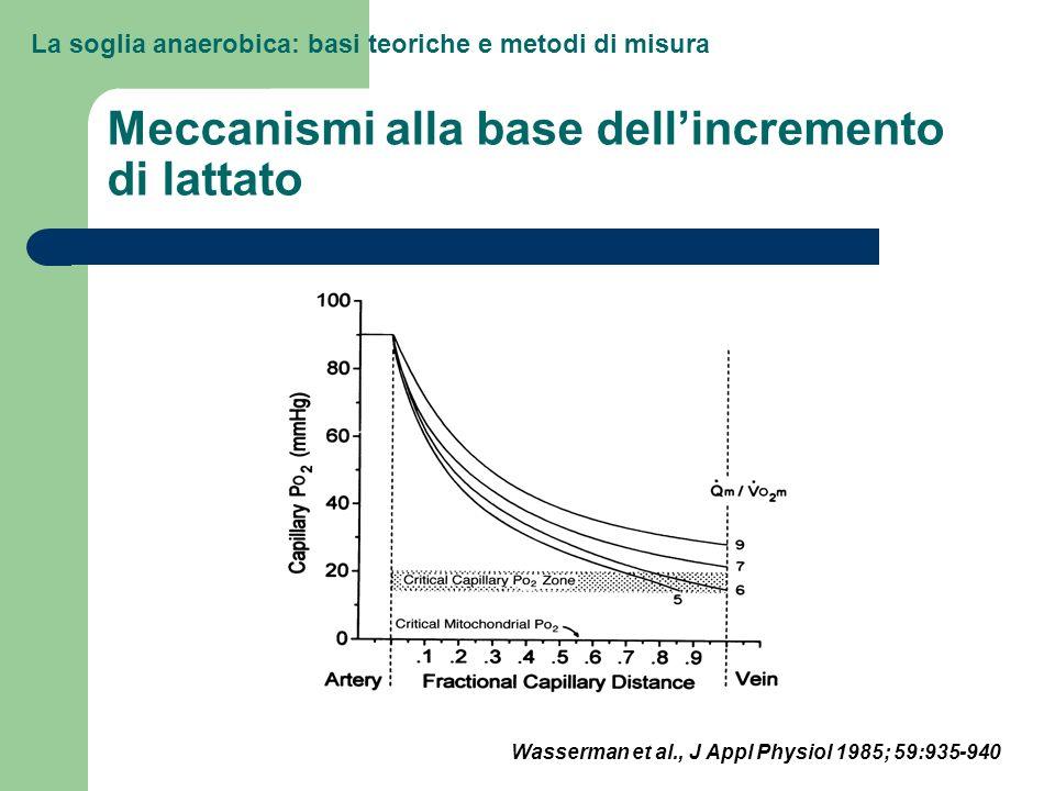 La soglia anaerobica: basi teoriche e metodi di misura Meccanismi alla base dellincremento di lattato Wasserman et al., J Appl Physiol 1985; 59:935-94