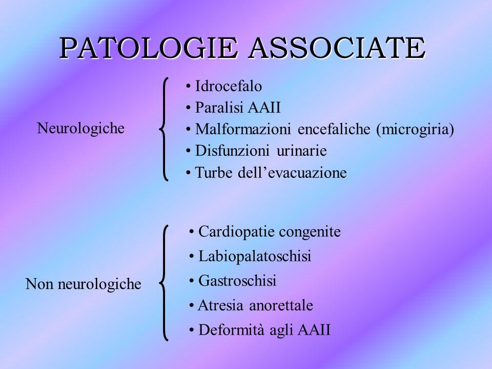 PATOLOGIE ASSOCIATE Neurologiche Non neurologiche Idrocefalo Paralisi AAII Malformazioni encefaliche (microgiria) Disfunzioni urinarie Turbe dellevacu