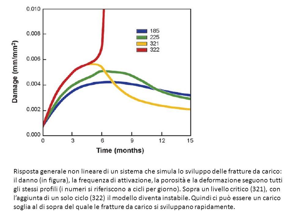 Risposta generale non lineare di un sistema che simula lo sviluppo delle fratture da carico: il danno (in figura), la frequenza di attivazione, la por