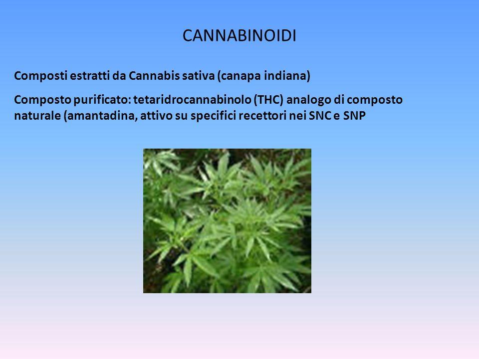 CANNABINOIDI Composti estratti da Cannabis sativa (canapa indiana) Composto purificato: tetaridrocannabinolo (THC) analogo di composto naturale (amantadina, attivo su specifici recettori nei SNC e SNP