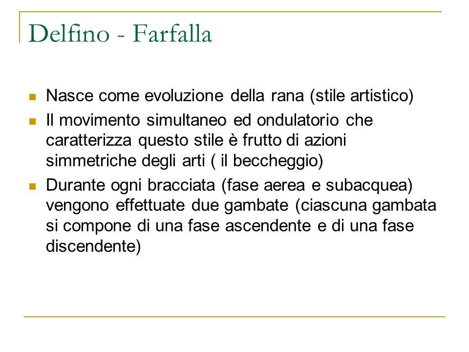 Delfino - Farfalla Nasce come evoluzione della rana (stile artistico) Il movimento simultaneo ed ondulatorio che caratterizza questo stile è frutto di