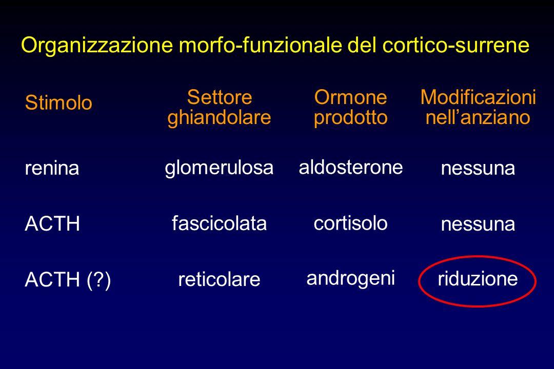 glomerulosa fascicolata reticolare Midollare surrenalica Corteccia surrenalica