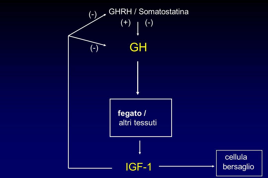 Modificazioni endocrine (para)fisiologiche nellanziano ridotta secrezione DHEA (adrenopausa) ridotta secrezione GH/IGF-1 (somatopausa) ridotta convers