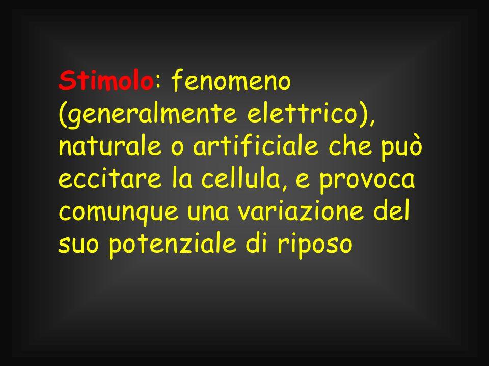 Stimolo: fenomeno (generalmente elettrico), naturale o artificiale che può eccitare la cellula, e provoca comunque una variazione del suo potenziale d