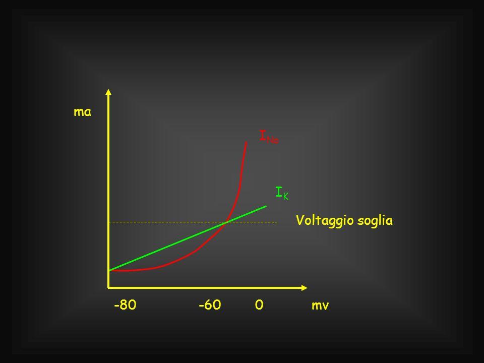 I Na IKIK Voltaggio soglia 0-60-80mv ma