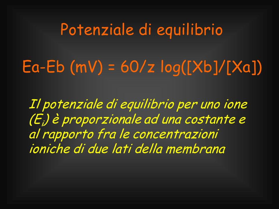 Potenziale di equilibrio Ea-Eb (mV) = 60/z log([Xb]/[Xa]) Il potenziale di equilibrio per uno ione (E i ) è proporzionale ad una costante e al rapport