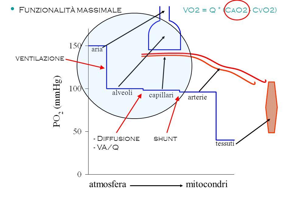 atmosfera mitocondri capillari alveoli aria arterie tessuti ventilazione - Diffusione - VA/Q shunt Funzionalità massimale VO2 = Q * (CaO2 - CvO2)