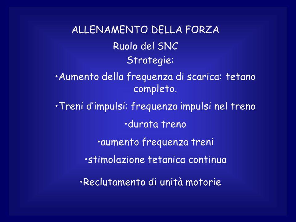 ALLENAMENTO DELLA FORZA Ruolo del SNC Strategie: Aumento della frequenza di scarica: tetano completo. Treni dimpulsi: frequenza impulsi nel treno dura