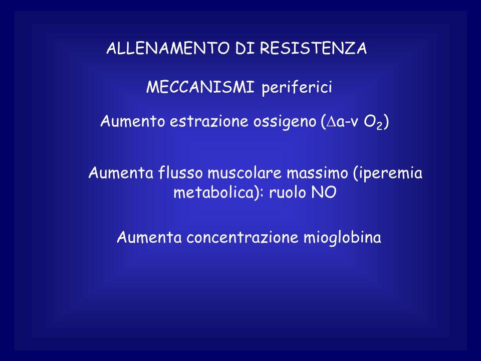 ALLENAMENTO DI RESISTENZA MECCANISMI periferici Aumento estrazione ossigeno ( a-v O 2 ) Aumenta flusso muscolare massimo (iperemia metabolica): ruolo