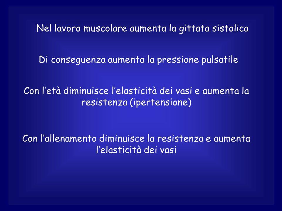 Nel lavoro muscolare aumenta la gittata sistolica Di conseguenza aumenta la pressione pulsatile Con letà diminuisce lelasticità dei vasi e aumenta la