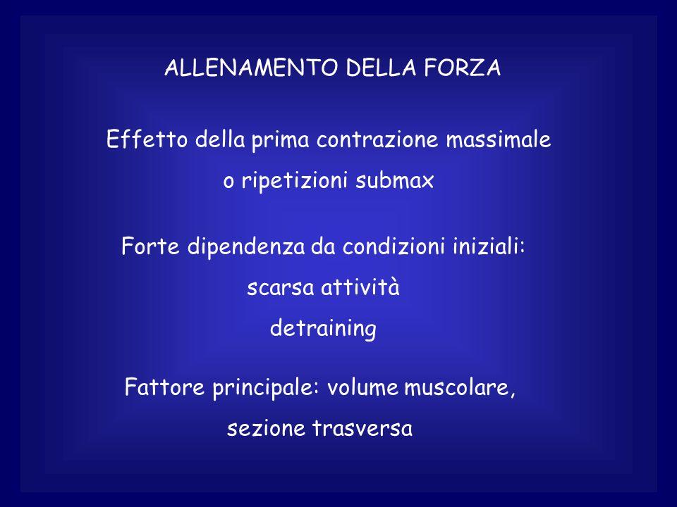 ALLENAMENTO DELLA FORZA Importanza degli elementi non contrattili Importanza della disposizione del muscolo es.