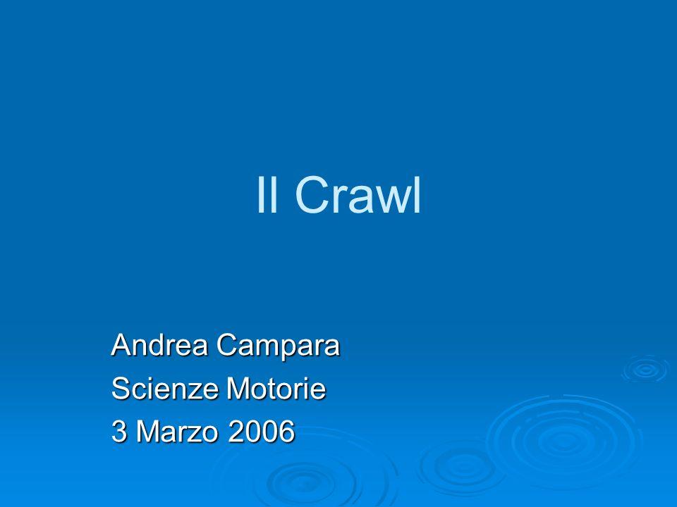 Il Crawl Andrea Campara Scienze Motorie 3 Marzo 2006