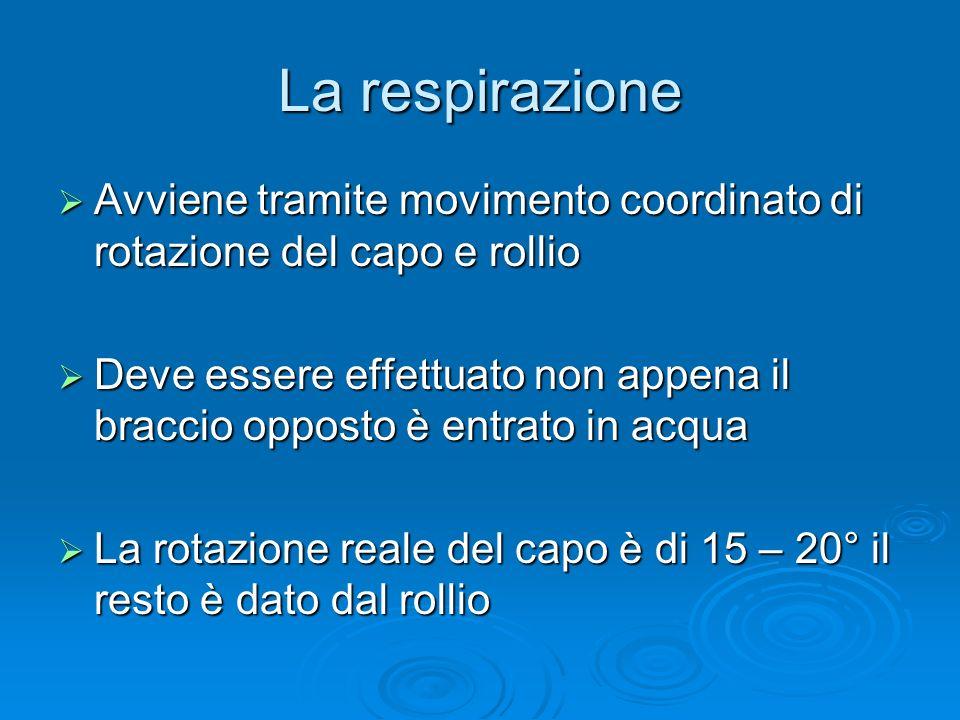 La respirazione Avviene tramite movimento coordinato di rotazione del capo e rollio Avviene tramite movimento coordinato di rotazione del capo e rolli