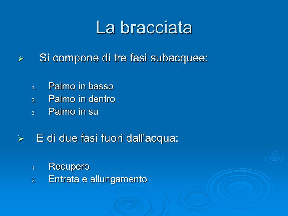 La bracciata Si compone di tre fasi subacquee: Si compone di tre fasi subacquee: 1. Palmo in basso 2. Palmo in dentro 3. Palmo in su E di due fasi fuo