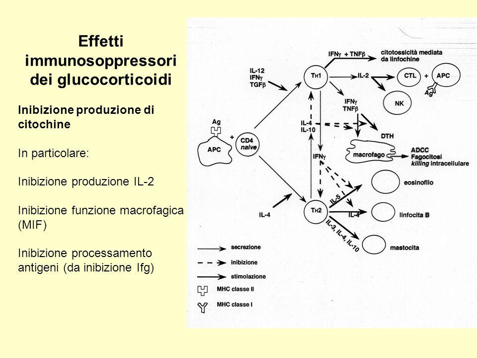 Effetti immunosoppressori dei glucocorticoidi Inibizione produzione di citochine In particolare: Inibizione produzione IL-2 Inibizione funzione macrof