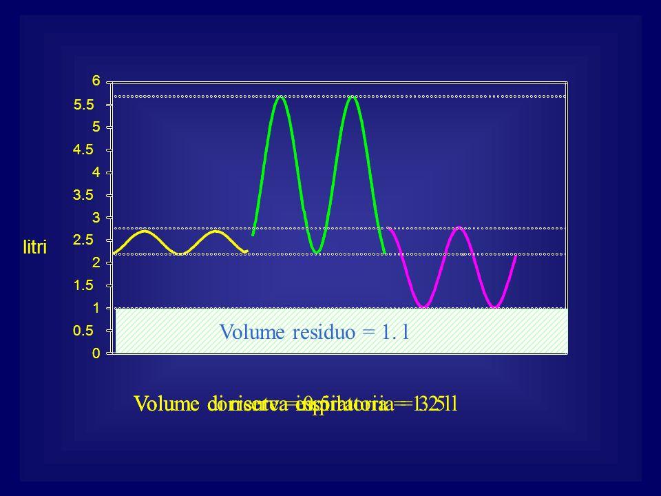0 0.5 1 1.5 2 2.5 3 3.5 4 4.5 5 5.5 6 litri Volume corrente = 0.5 lVolume di riserva inspiratoria = 3.5 lVolume di riserva espiratoria = 1.2 l Volume