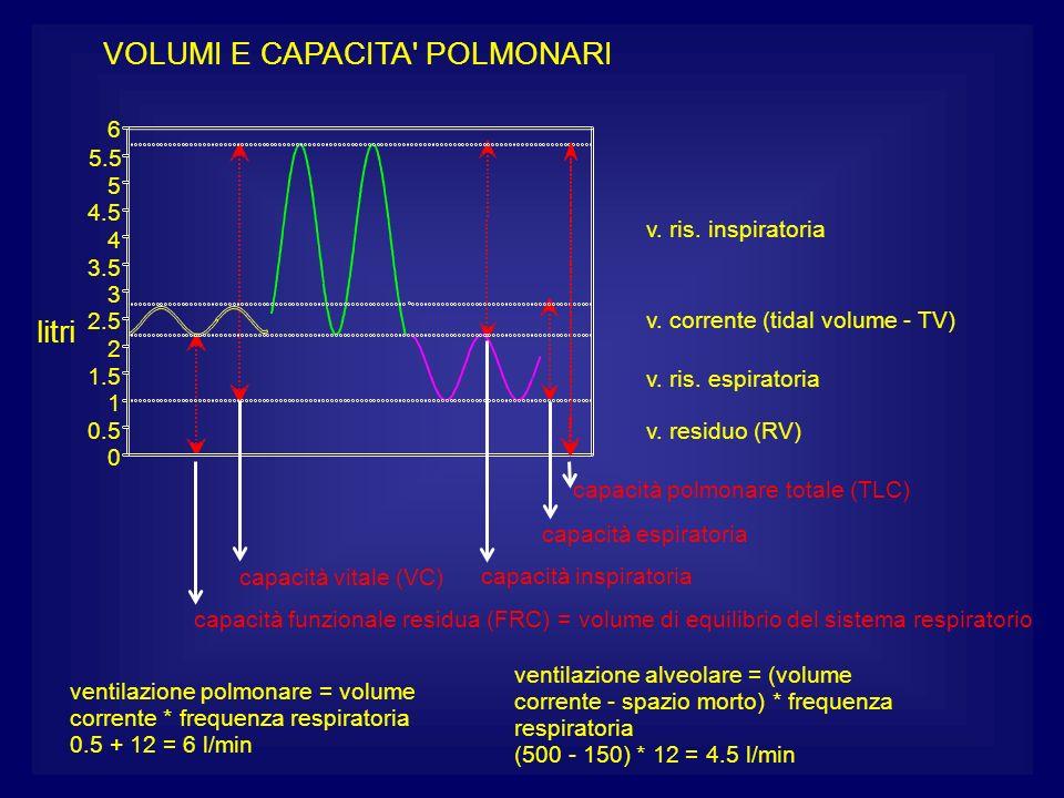 ventilazione alveolare = (volume corrente - spazio morto) * frequenza respiratoria (500 - 150) * 12 = 4.5 l/min corrente * frequenza respiratoria vent