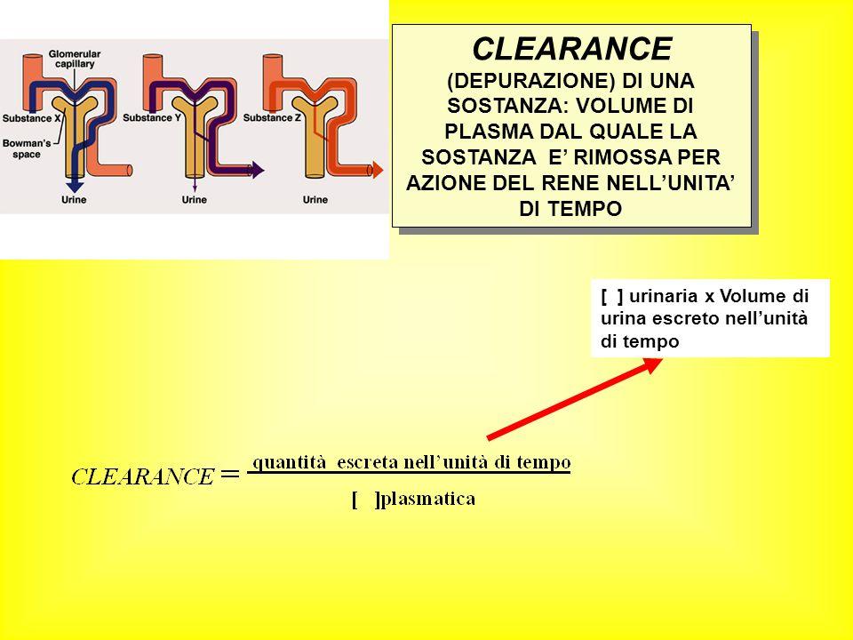 [ ] urinaria x Volume di urina escreto nellunità di tempo CLEARANCE (DEPURAZIONE) DI UNA SOSTANZA: VOLUME DI PLASMA DAL QUALE LA SOSTANZA E RIMOSSA PE