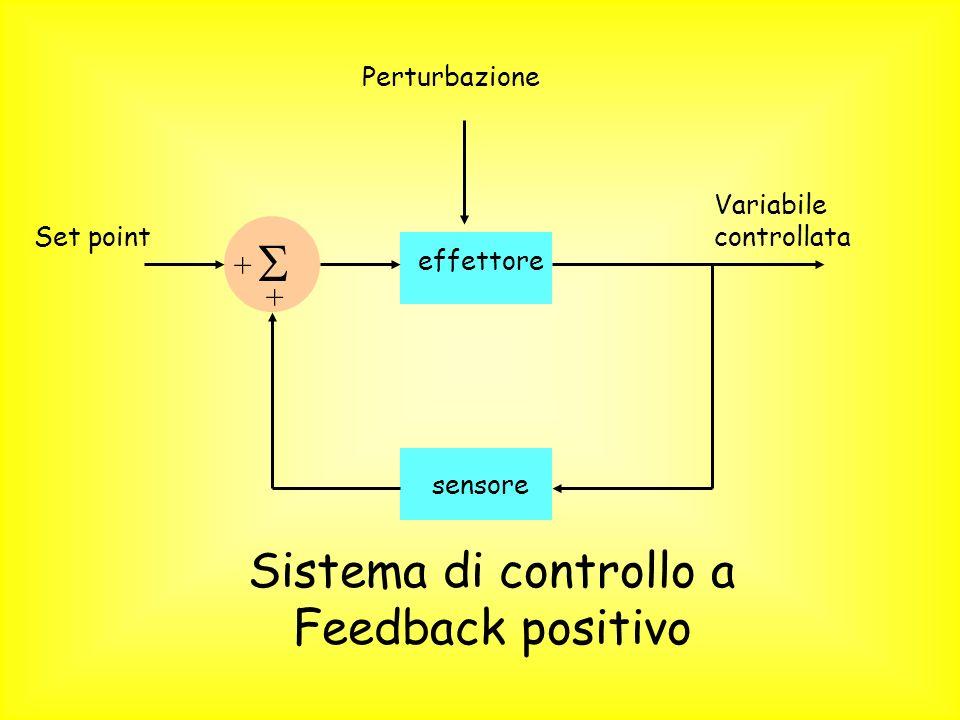 Set point sensore Variabile controllata effettore + + Perturbazione Sistema di controllo a Feedback positivo