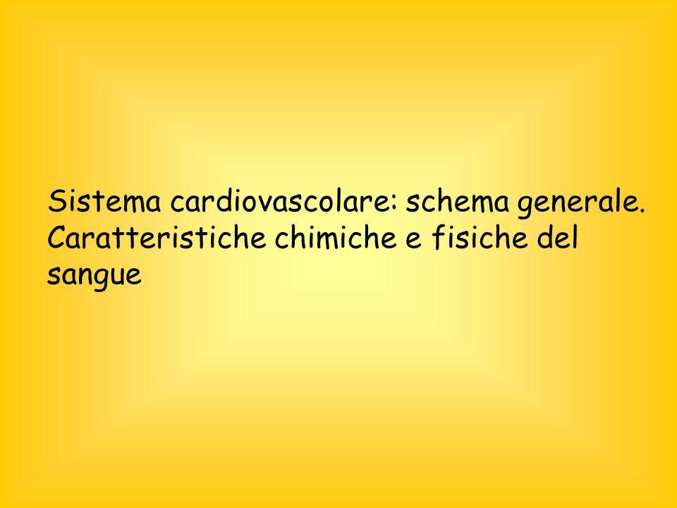 Sistema cardiovascolare: schema generale. Caratteristiche chimiche e fisiche del sangue