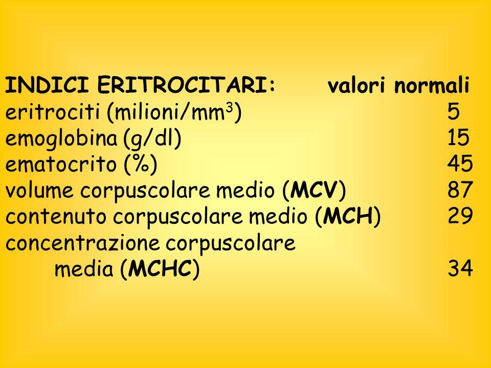 INDICI ERITROCITARI: valori normali eritrociti (milioni/mm 3 )5 emoglobina (g/dl)15 ematocrito (%)45 volume corpuscolare medio (MCV)87 contenuto corpuscolare medio (MCH)29 concentrazione corpuscolare media (MCHC)34