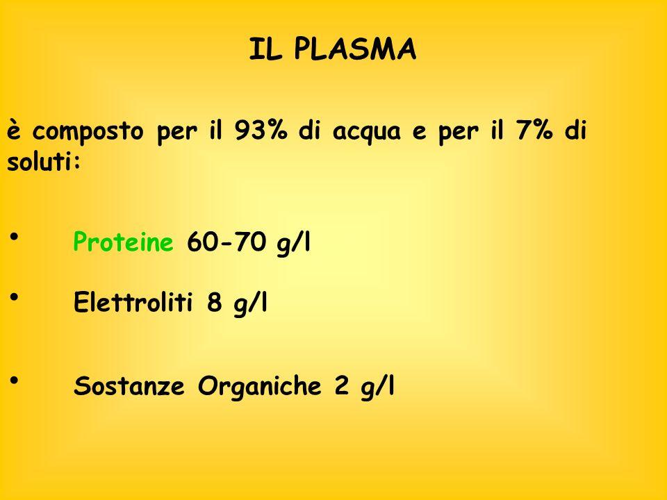 IL PLASMA è composto per il 93% di acqua e per il 7% di soluti: Proteine 60-70 g/l Elettroliti 8 g/l Sostanze Organiche 2 g/l