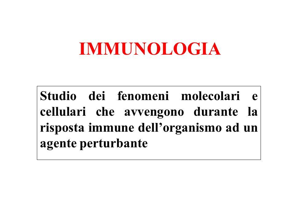IMMUNOLOGIA Studio dei fenomeni molecolari e cellulari che avvengono durante la risposta immune dellorganismo ad un agente perturbante