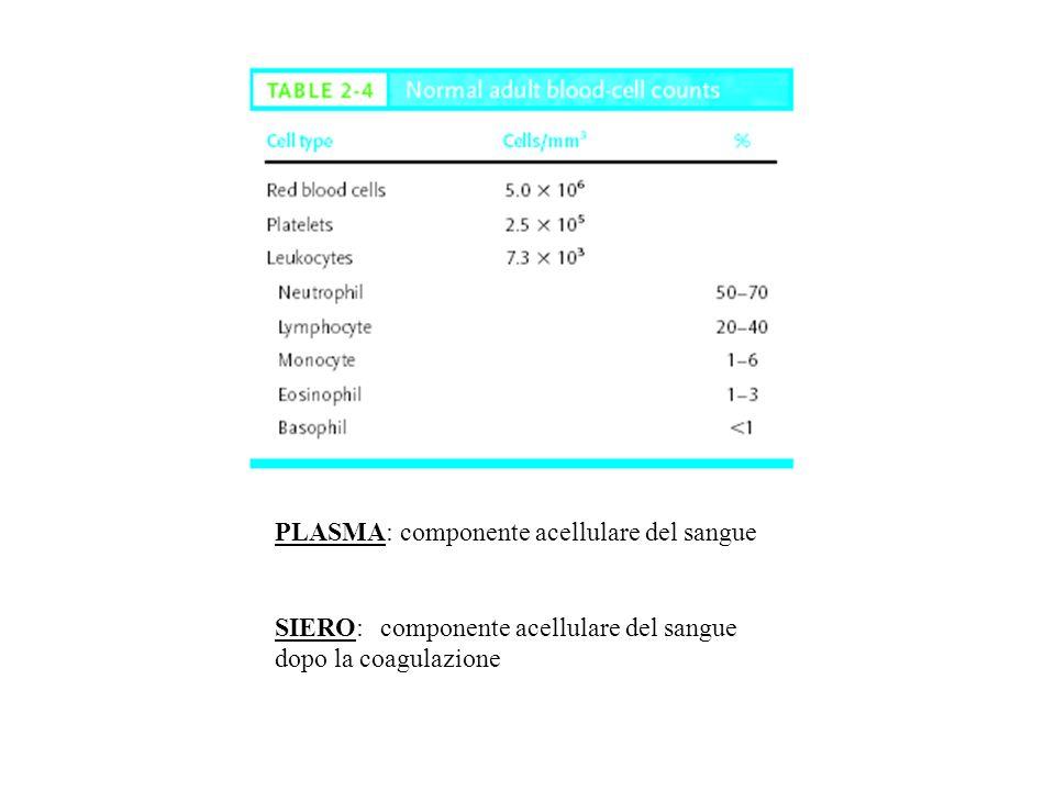 PLASMA: componente acellulare del sangue SIERO:componente acellulare del sangue dopo la coagulazione