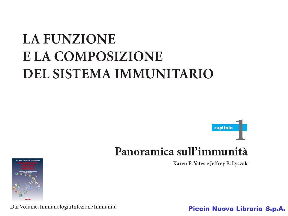 Dal Volume: Immunologia Infezione Immunità Piccin Nuova Libraria S.p.A.