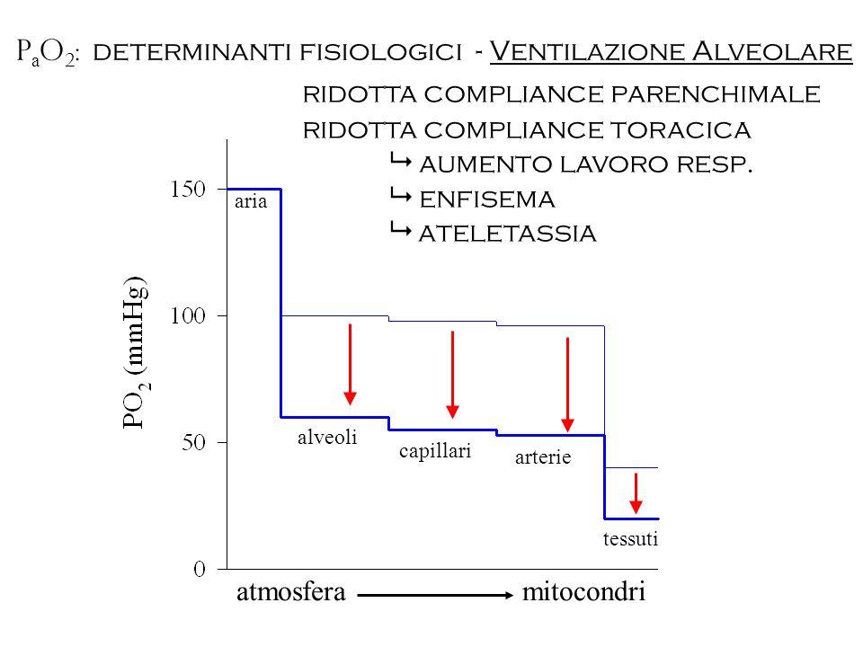 atmosfera mitocondri ridotta compliance parenchimale ridotta compliance toracica aumento lavoro resp. enfisema ateletassia P a O 2 : determinanti fisi