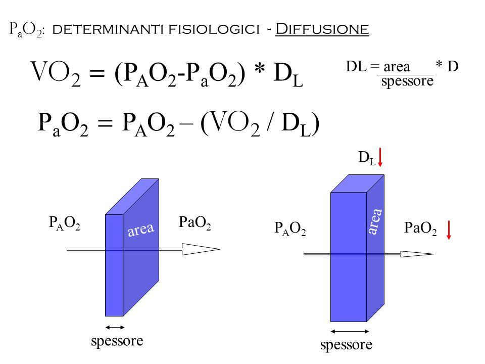 VO 2 = (P A O 2 -P a O 2 ) * D L DL = area * D spessore area PaO 2 PAO2PAO2 spessore area PaO 2 PAO2PAO2 P a O 2 = P A O 2 – ( VO 2 / D L ) DLDL P a O