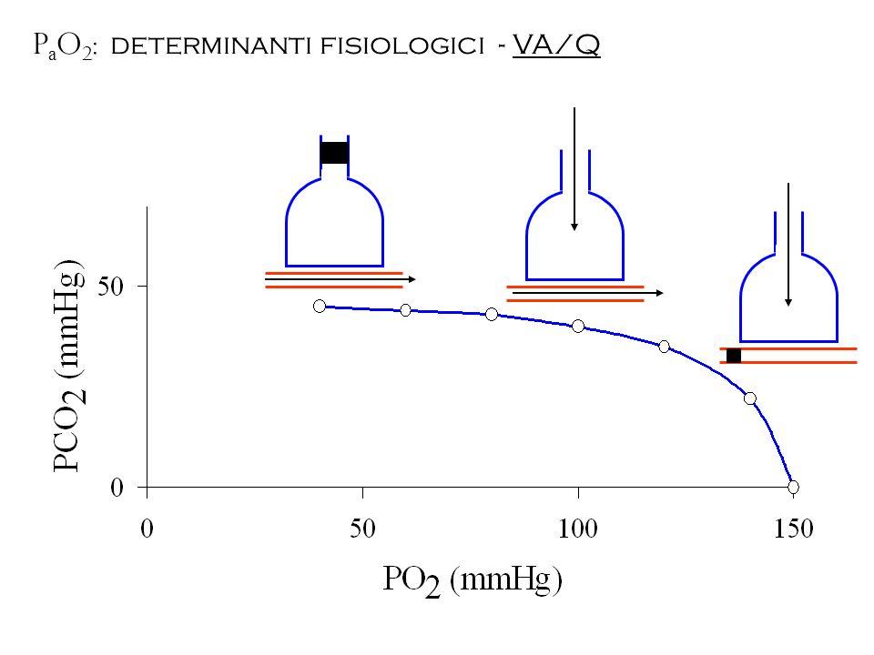 P a O 2 : determinanti fisiologici - VA/Q