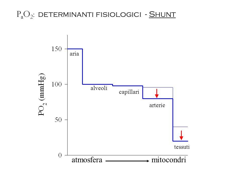 P a O 2 : determinanti fisiologici - Shunt atmosfera mitocondri aria alveoli capillari arterie tessuti