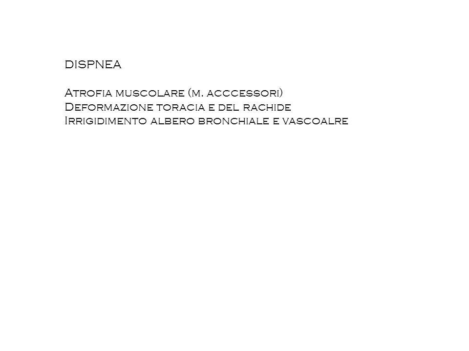DISPNEA Atrofia muscolare (m. acccessori) Deformazione toracia e del rachide Irrigidimento albero bronchiale e vascoalre