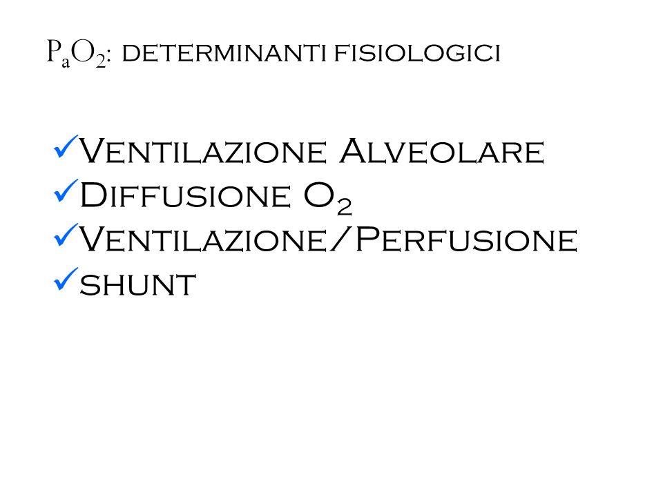 P a O 2 : determinanti fisiologici - Ventilazione Alveolare VE * FECO 2 = VD * FICO 2 + VA * FACO 2 VCO 2 = VA * FACO 2 VA = VCO 2 / FACO 2 Equazione del gas alveolare: FAO 2 = FIO 2 – (FACO 2 / R) FACO 2 = VCO 2 / VA