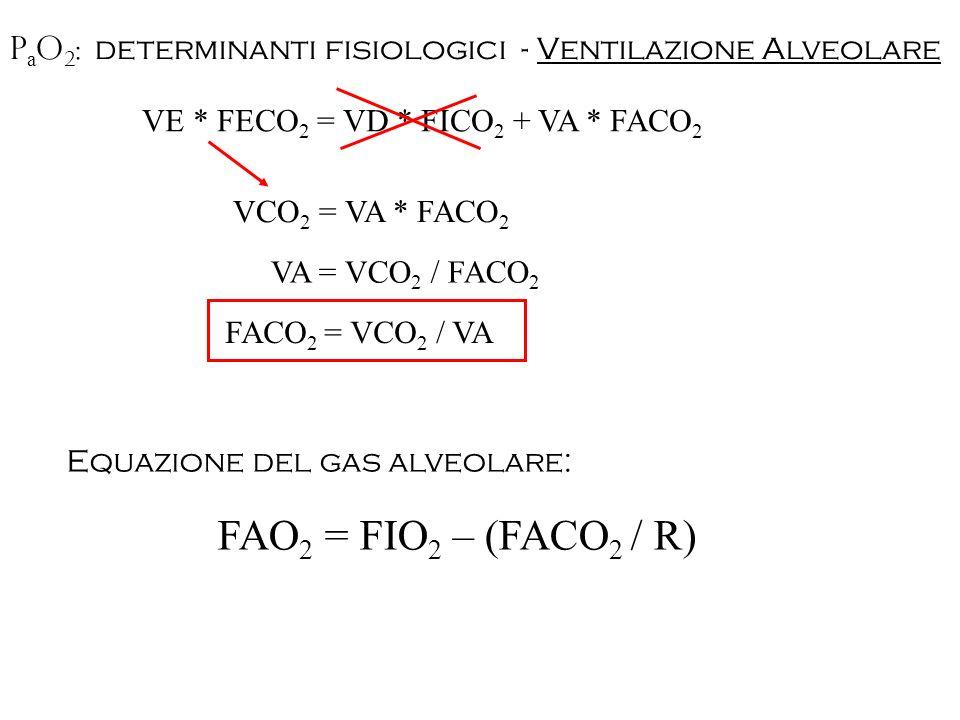 P a O 2 : determinanti fisiologici - Ventilazione Alveolare VE * FECO 2 = VD * FICO 2 + VA * FACO 2 VCO 2 = VA * FACO 2 VA = VCO 2 / FACO 2 Equazione