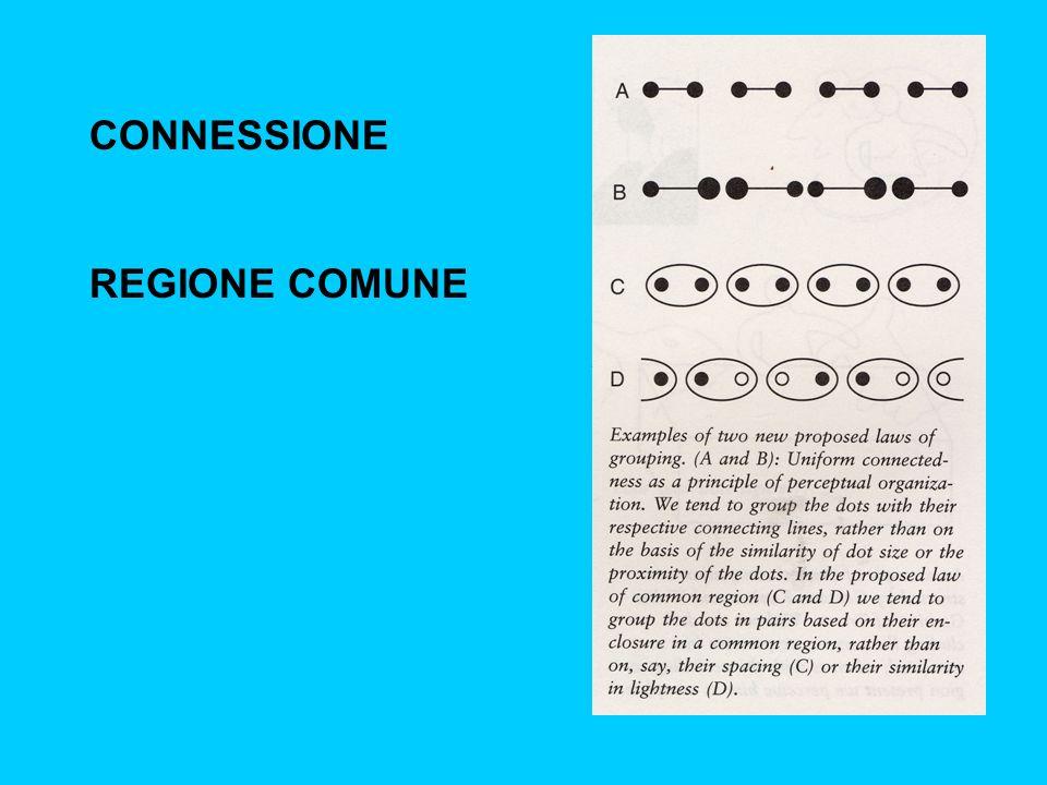 CONNESSIONE REGIONE COMUNE