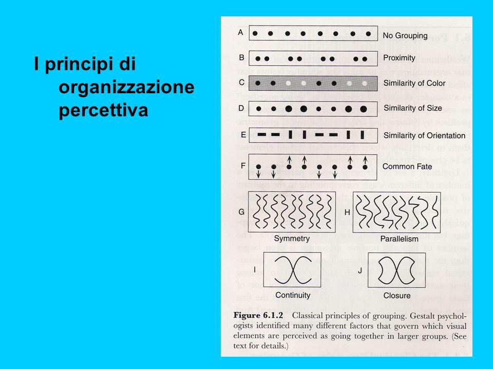 I principi di organizzazione percettiva