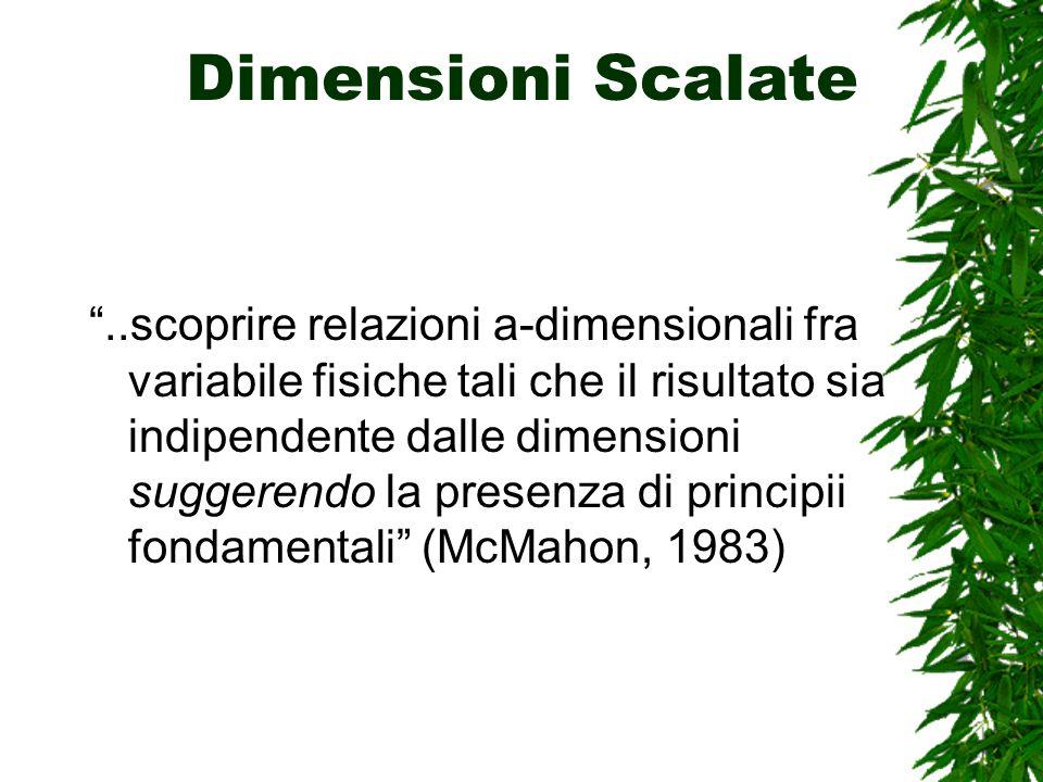 Dimensioni Scalate..scoprire relazioni a-dimensionali fra variabile fisiche tali che il risultato sia indipendente dalle dimensioni suggerendo la presenza di principii fondamentali (McMahon, 1983)