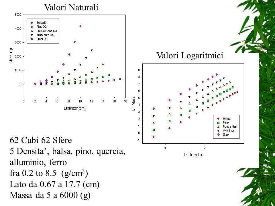 Valori Naturali Valori Logaritmici 62 Cubi 62 Sfere 5 Densita, balsa, pino, quercia, alluminio, ferro fra 0.2 to 8.5 (g/cm 3 ) Lato da 0.67 a 17.7 (cm) Massa da 5 a 6000 (g)