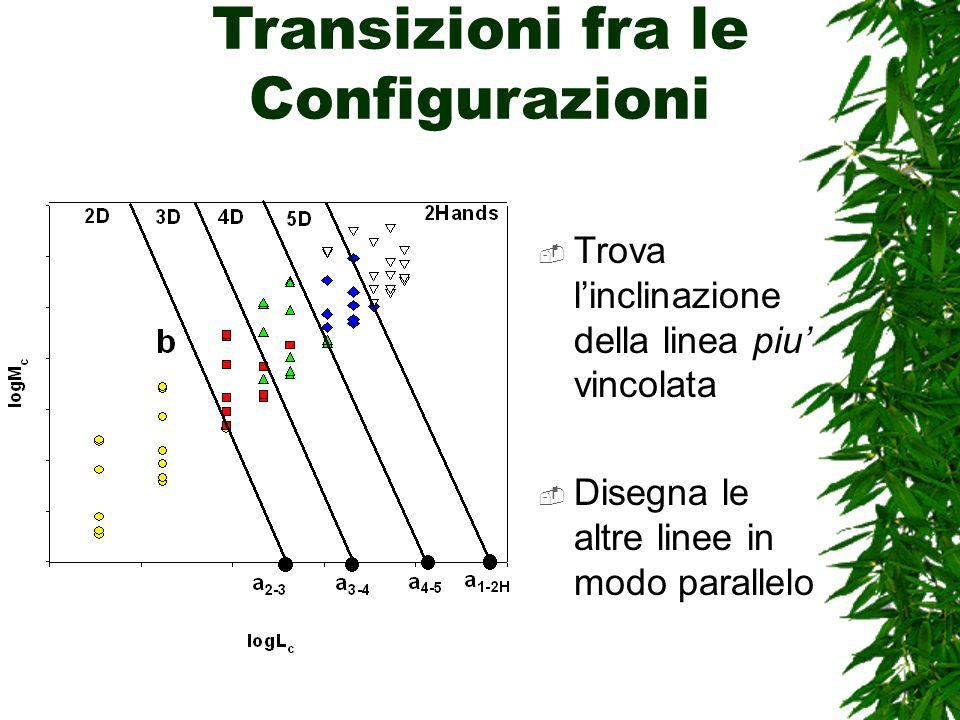 Transizioni fra le Configurazioni Trova linclinazione della linea piu vincolata Disegna le altre linee in modo parallelo