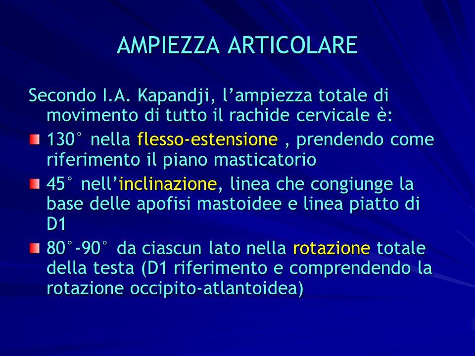 AMPIEZZA ARTICOLARE Secondo I.A.