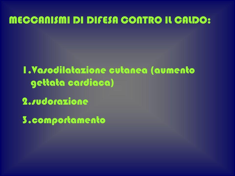 1.Vasodilatazione cutanea (aumento gettata cardiaca) 2.sudorazione 3.comportamento MECCANISMI DI DIFESA CONTRO IL CALDO:
