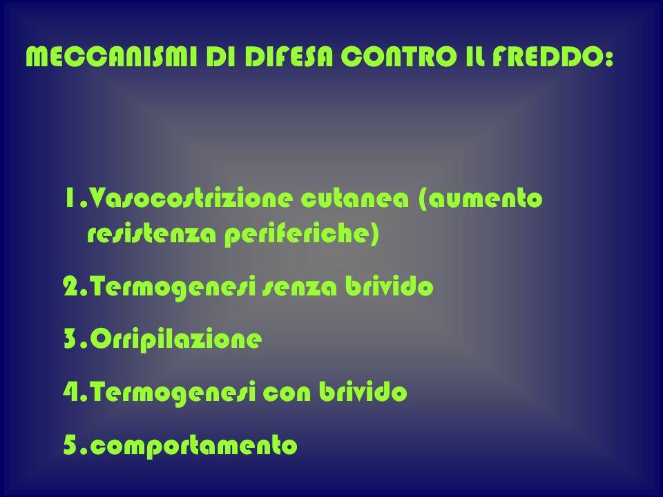 1.Vasocostrizione cutanea (aumento resistenza periferiche) 2.Termogenesi senza brivido 3.Orripilazione 4.Termogenesi con brivido 5.comportamento MECCA