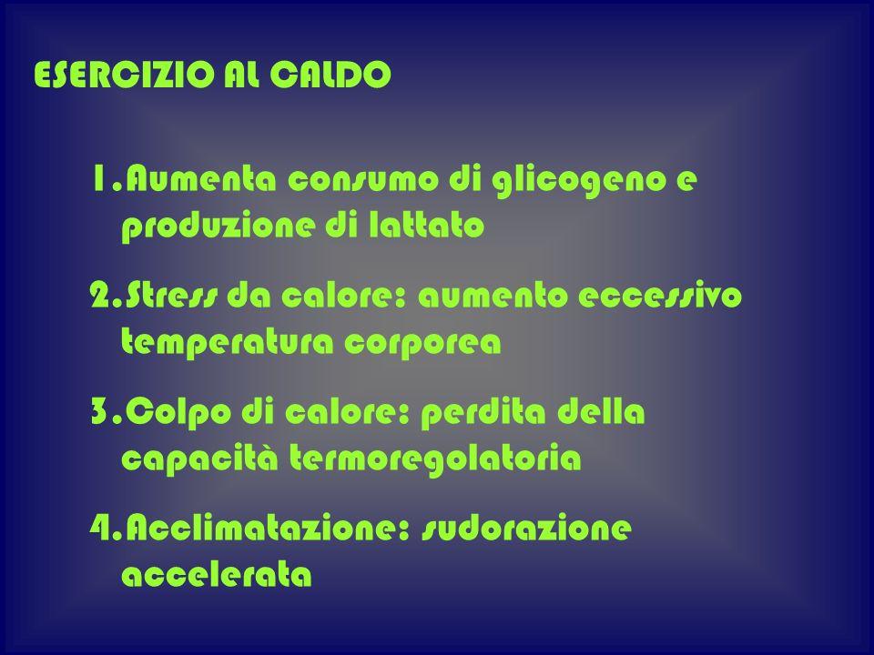 1.Aumenta consumo di glicogeno e produzione di lattato 2.Stress da calore: aumento eccessivo temperatura corporea 3.Colpo di calore: perdita della cap