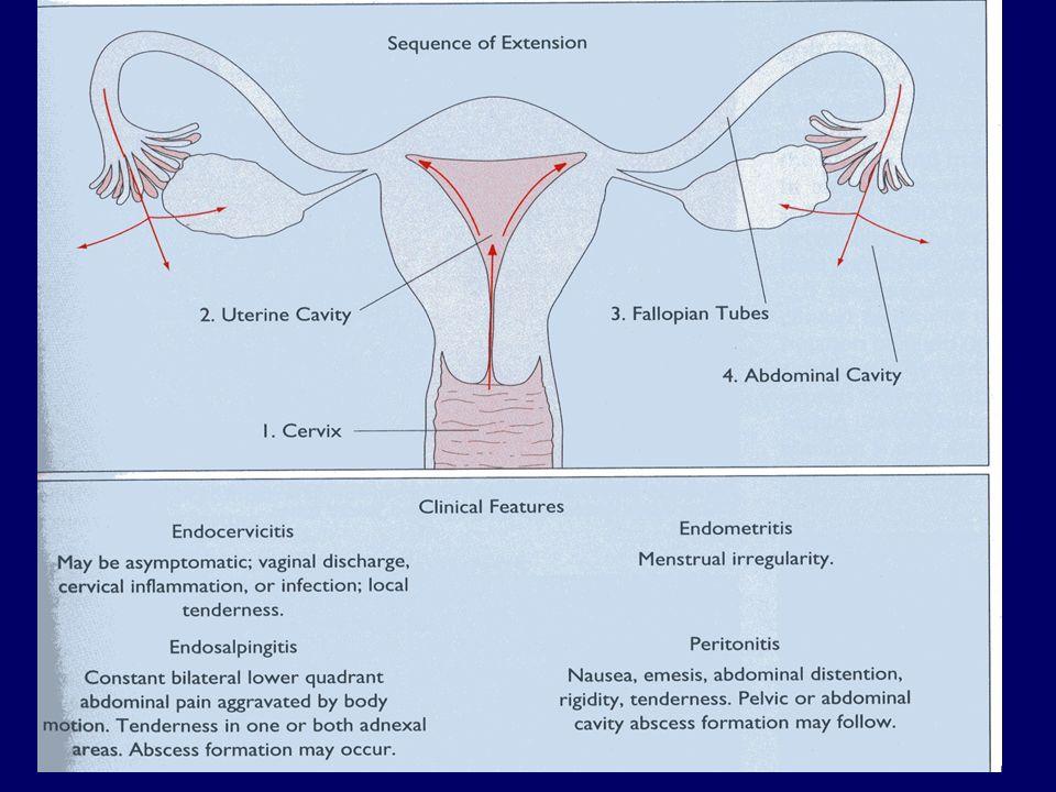 PID: epidemiologia Categorie a rischio - donne sessualmente attive (frequenza dei rapporti) -giovane età -storia anamnestica di MST (soprattutto gonorrea) o salpingite -impiego di contraccettivi intra-uterini Eziologia -N.gonorrhoeae -Chlamydia trachomatis -micoplasmi -anaerobi PS: spesso eziologia mista!
