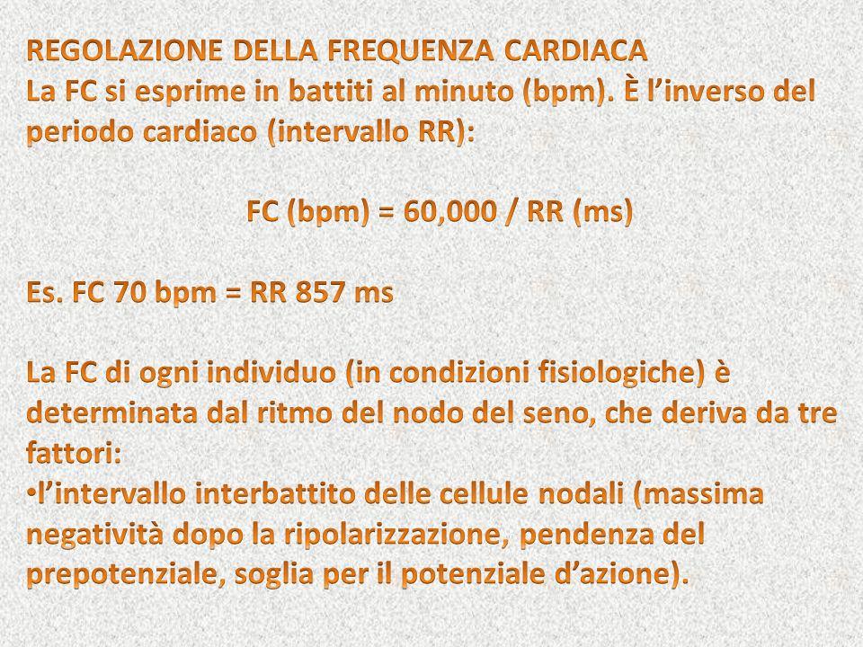 prepotenziale Miocardio di lavoroCell. nodali